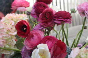 flower. photo by jsl